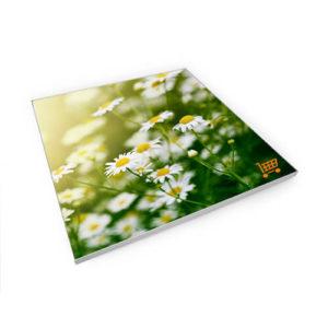 GMMCK-Binnenreclame-Frames-Stretchframe-001-.jpg